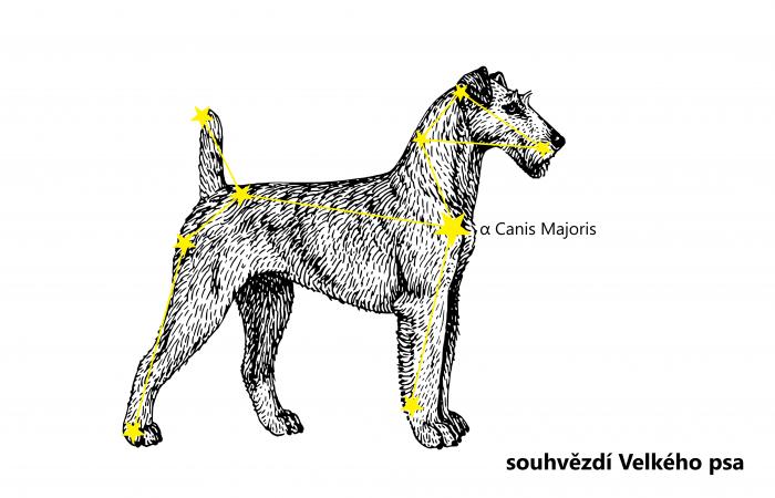 0 1 před irish canis major